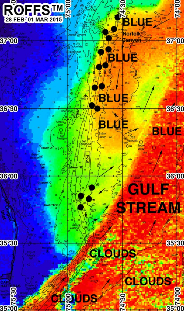 Blue Water Report Map Gulf 26